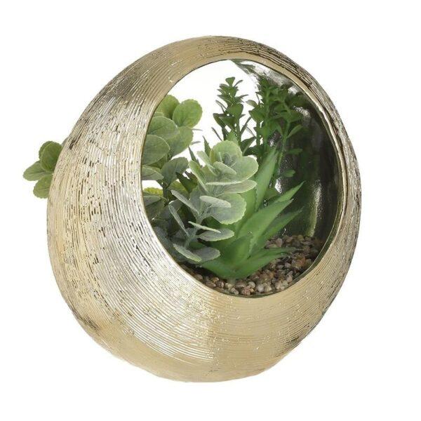 Γλαστράκι με Φυτό 25x24