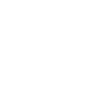 christmas category icon